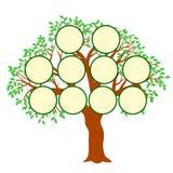 Вектор иллюстрации концепции фамильного дерев дерева стоковые фотографии rf