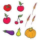 вектор иллюстрации плодоовощ Стоковые Изображения RF