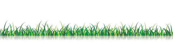 вектор иллюстрации травы Стоковые Фотографии RF