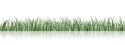 вектор иллюстрации травы Стоковое Изображение RF