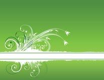 вектор иллюстрации цветка конструкции Стоковые Изображения