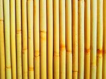 вектор иллюстрации eps 10 предпосылок bamboo Стоковая Фотография
