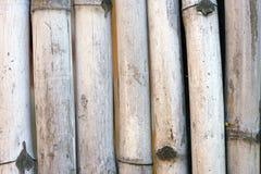 вектор иллюстрации eps 10 предпосылок bamboo Стоковые Изображения