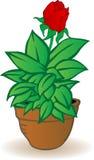 вектор иллюстрации flowerpot Стоковая Фотография RF