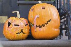 вектор иллюстрации halloween установленный тыквами Стоковые Фото