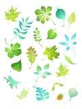 вектор листьев икон конструкторов зеленый Стоковое фото RF