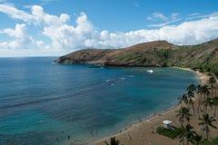 вектор иллюстрации Гавайских островов пляжа тропический Стоковое Фото