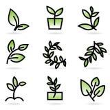 вектор иллюстрации зеленого цвета травы Стоковые Фото