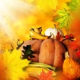 вектор иллюстрации предпосылки осени красивейший Стоковое Фото