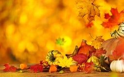 вектор иллюстрации предпосылки осени красивейший Стоковое Изображение