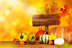вектор иллюстрации предпосылки осени красивейший Стоковые Фото