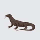 Вектор иллюстрации дракона komodo Стоковая Фотография