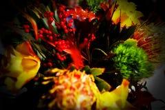 вектор иллюстрации цветков букета флористический Стоковые Изображения RF