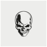 Вектор иллюстрации черепа Стоковые Фото