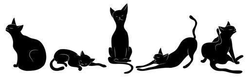 вектор иллюстрации черных котов установленный Стоковое Изображение