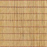 вектор иллюстрации eps 10 предпосылок bamboo Стоковое Изображение RF