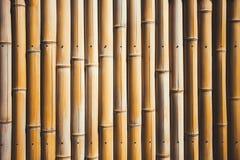 вектор иллюстрации eps 10 предпосылок bamboo Стоковые Изображения RF