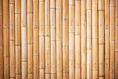 вектор иллюстрации eps 10 предпосылок bamboo Стоковое Изображение