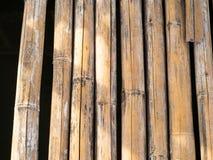 вектор иллюстрации eps 10 предпосылок bamboo Стоковые Фотографии RF