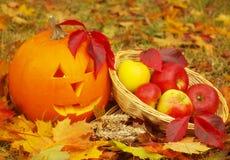 вектор иллюстрации halloween установленный тыквами Стоковые Изображения