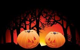 вектор иллюстрации halloween установленный тыквами стоковые изображения rf