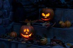 вектор иллюстрации halloween установленный тыквами Стоковое Фото