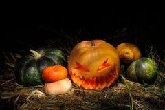 вектор иллюстрации halloween установленный тыквами стоковые фотографии rf