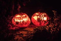 вектор иллюстрации halloween установленный тыквами Стоковое Изображение