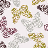 вектор картины бабочек безшовный Стоковые Фото