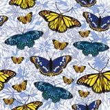 вектор картины бабочек безшовный Стоковое Фото