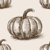 Вектор картины эскиза тыквы нарисованный рукой безшовный Стоковое Фото