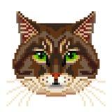 Вектор кота пиксела сибирской изолированный стороной Стоковые Фото