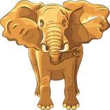 вектор красного цвета африканского слона иллюстрация вектора