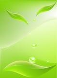 вектор листьев предпосылки Стоковая Фотография