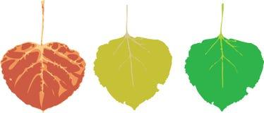 вектор листьев Стоковые Изображения