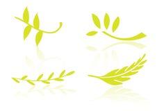 вектор логоса листьев элементов иллюстрация штока