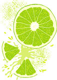 вектор ломтика лимона Стоковые Изображения RF