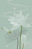 вектор лотоса иллюстрации dragonfly waterlily Стоковые Изображения