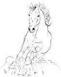 вектор лошади иллюстрация штока