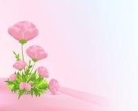 вектор маков cdr розовый Стоковое Изображение