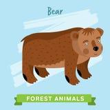 Вектор медведя, животные леса Стоковые Изображения RF