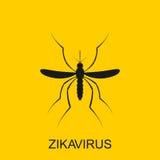Вектор москита Zika Сигнал тревоги вируса Aedes Aegypti на белой предпосылке Стоковые Изображения