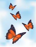вектор неба бабочек Стоковое Фото
