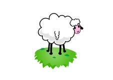 вектор овец иллюстрации Стоковое Изображение