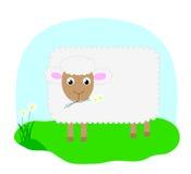 вектор овец Стоковое фото RF