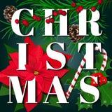 вектор открытки иллюстрации рождества eps10 ветви ели, Poinsettia, ягода падуба, тросточка caddy, конусы, на черной доске иллюстрация вектора