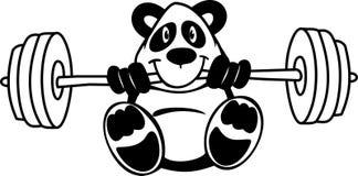 Вектор - панда держа штангу Бесплатная Иллюстрация