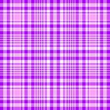 вектор пинка картины lilas безшовный Стоковая Фотография