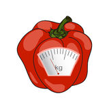 вектор Покрашенный вручную Концепция потери веса, здоровое lifest Стоковые Фото