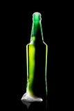 вектор померанца иллюстрации бутылки пива предпосылки Стоковые Фото